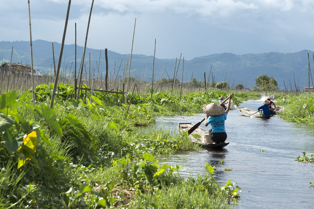 Inle Lake,  floating orchards